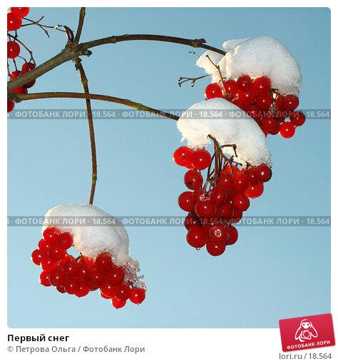 Первый снег, фото № 18564, снято 12 ноября 2006 г. (c) Петрова Ольга / Фотобанк Лори