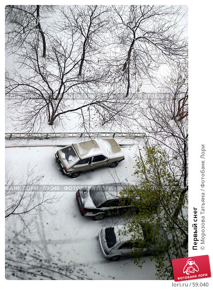 Купить «Первый снег», фото № 59040, снято 26 октября 2005 г. (c) Морозова Татьяна / Фотобанк Лори
