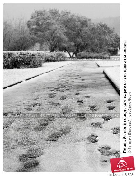 Купить «Первый снег в городском парке со следами на аллее», эксклюзивное фото № 118828, снято 14 октября 2007 г. (c) Татьяна Белова / Фотобанк Лори