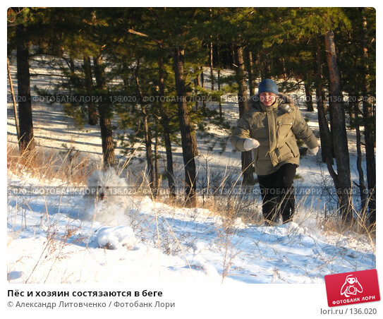 Купить «Пёс и хозяин состязаются в беге», фото № 136020, снято 25 ноября 2007 г. (c) Александр Литовченко / Фотобанк Лори