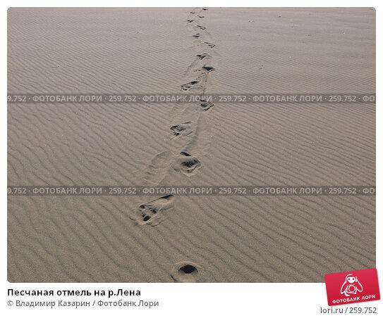 Песчаная отмель на р.Лена, фото № 259752, снято 4 августа 2007 г. (c) Владимир Казарин / Фотобанк Лори