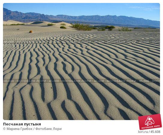 Песчаная пустыня, фото № 45608, снято 21 ноября 2005 г. (c) Марина Грибок / Фотобанк Лори