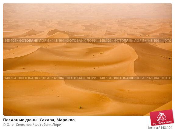 Песчаные дюны. Сахара, Марокко., фото № 148104, снято 19 августа 2007 г. (c) Олег Селезнев / Фотобанк Лори