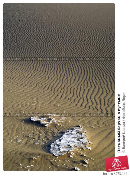 Песчаный бархан в пустыне, фото № 273144, снято 28 ноября 2007 г. (c) Валерий Шанин / Фотобанк Лори