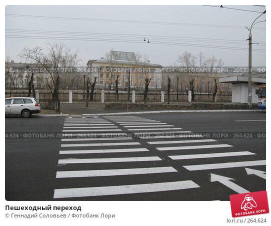 Пешеходный переход, фото № 264624, снято 25 апреля 2008 г. (c) Геннадий Соловьев / Фотобанк Лори
