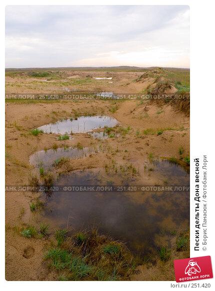 Пески дельты Дона весной, фото № 251420, снято 11 апреля 2008 г. (c) Борис Панасюк / Фотобанк Лори
