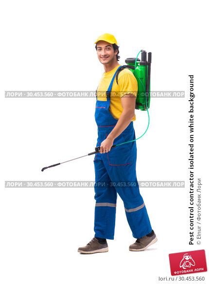 Pest control contractor isolated on white background. Стоковое фото, фотограф Elnur / Фотобанк Лори