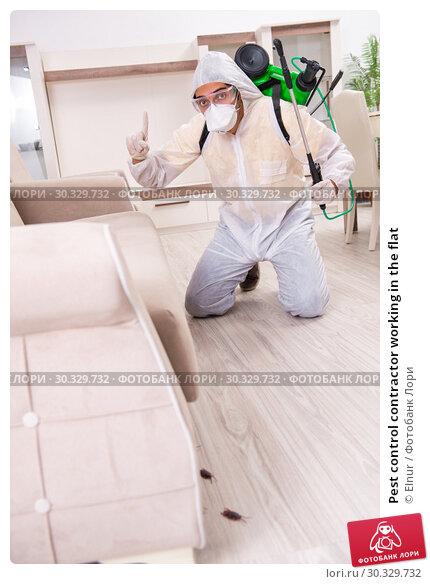 Купить «Pest control contractor working in the flat», фото № 30329732, снято 12 ноября 2018 г. (c) Elnur / Фотобанк Лори