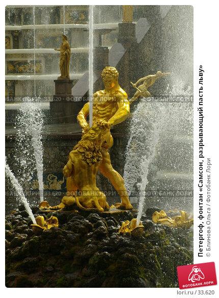 Петергоф, фонтан «Самсон, разрывающий пасть льву», фото № 33620, снято 24 августа 2006 г. (c) Блинова Ольга / Фотобанк Лори