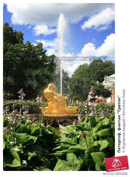 """Петергоф, фонтан """"Тритон"""", фото № 293820, снято 23 июля 2007 г. (c) Журавлев Андрей / Фотобанк Лори"""