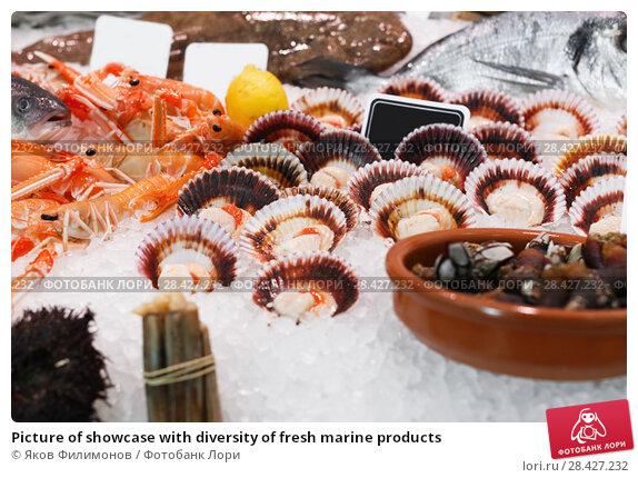 Купить «Picture of showcase with diversity of fresh marine products», фото № 28427232, снято 26 января 2018 г. (c) Яков Филимонов / Фотобанк Лори