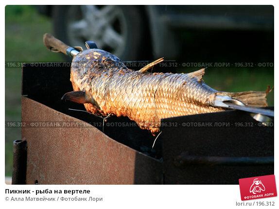 Пикник - рыба на вертеле, фото № 196312, снято 23 июня 2007 г. (c) Алла Матвейчик / Фотобанк Лори