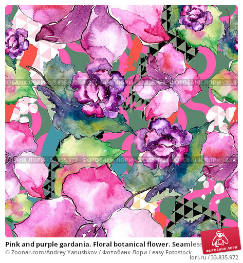 Купить «Pink and purple gardania. Floral botanical flower. Seamless background pattern. Fabric wallpaper print texture. Aquarelle wildflower for background, texture, wrapper pattern, frame or border.», фото № 33835972, снято 1 июня 2020 г. (c) easy Fotostock / Фотобанк Лори