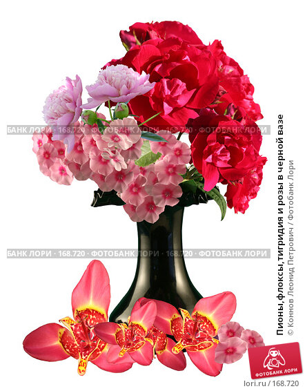 Пионы,флоксы,тигридия и розы в черной вазе, фото № 168720, снято 18 августа 2017 г. (c) Коннов Леонид Петрович / Фотобанк Лори