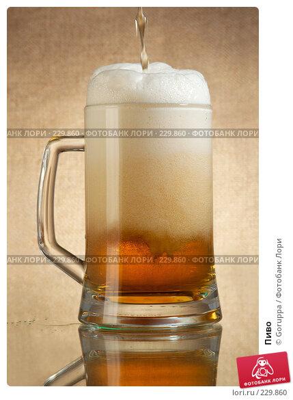 Купить «Пиво», фото № 229860, снято 25 ноября 2017 г. (c) Goruppa / Фотобанк Лори