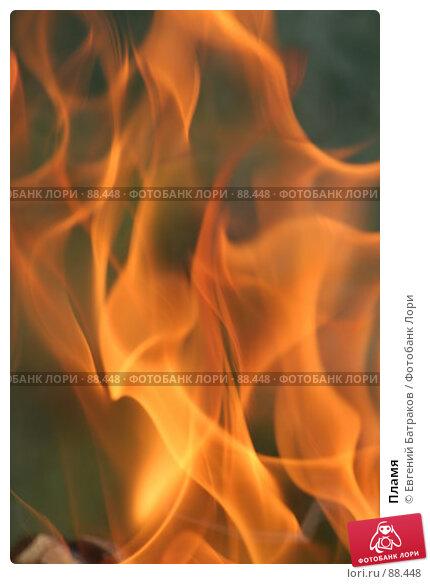 Купить «Пламя», фото № 88448, снято 12 августа 2007 г. (c) Евгений Батраков / Фотобанк Лори