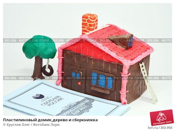 Пластилиновый домик,дерево и сберкнижка, фото № 303956, снято 27 мая 2008 г. (c) Круглов Олег / Фотобанк Лори
