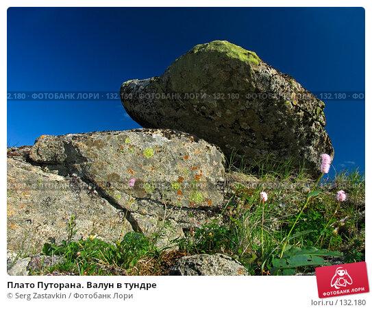 Плато Путорана. Валун в тундре, фото № 132180, снято 23 июля 2004 г. (c) Serg Zastavkin / Фотобанк Лори