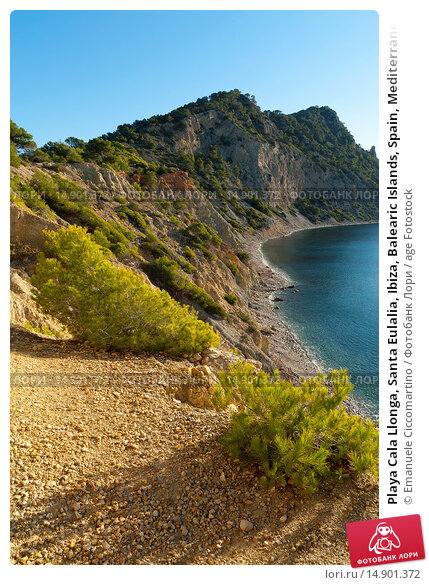 Купить «Playa Cala Llonga, Santa Eulalia, Ibiza, Balearic Islands, Spain, Mediterranean, Europe.», фото № 14901372, снято 19 июня 2018 г. (c) age Fotostock / Фотобанк Лори