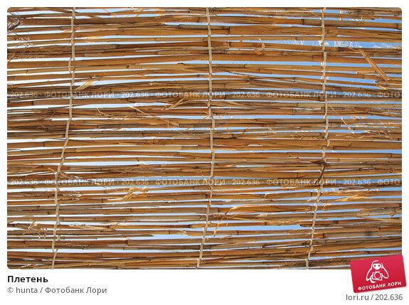 Плетень, фото № 202636, снято 23 сентября 2007 г. (c) hunta / Фотобанк Лори