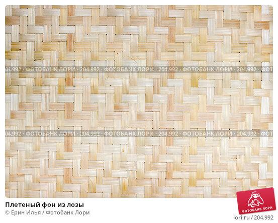 Плетеный фон из лозы, фото № 204992, снято 19 февраля 2008 г. (c) Ерин Илья / Фотобанк Лори