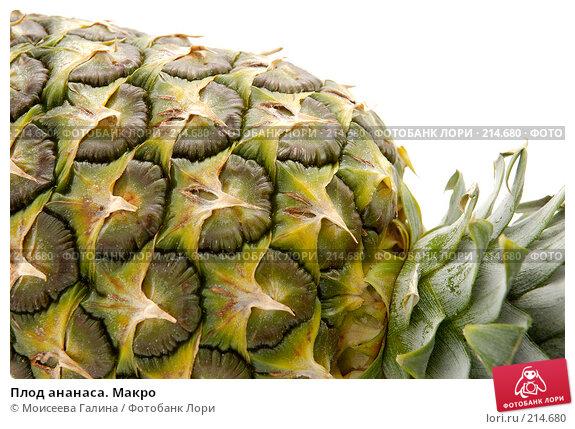 Купить «Плод ананаса. Макро», фото № 214680, снято 25 ноября 2007 г. (c) Моисеева Галина / Фотобанк Лори