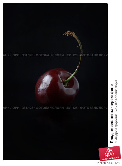 Плод черешни на чером фоне, фото № 331128, снято 23 июня 2008 г. (c) Андрей Доронченко / Фотобанк Лори