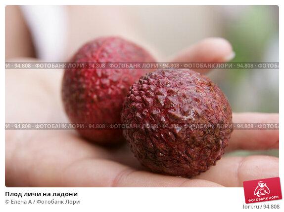 Плод личи на ладони, фото № 94808, снято 28 июня 2007 г. (c) Елена А / Фотобанк Лори