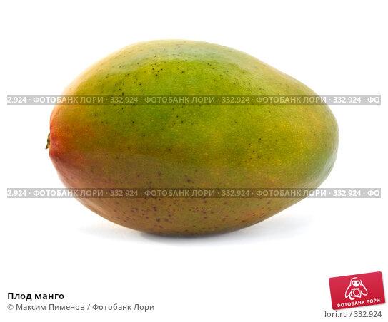 Плод манго, фото № 332924, снято 20 марта 2008 г. (c) Максим Пименов / Фотобанк Лори
