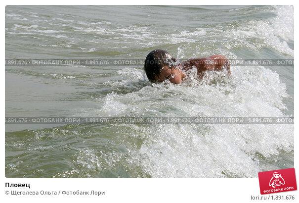 Купить «Пловец», эксклюзивное фото № 1891676, снято 22 августа 2008 г. (c) Щеголева Ольга / Фотобанк Лори