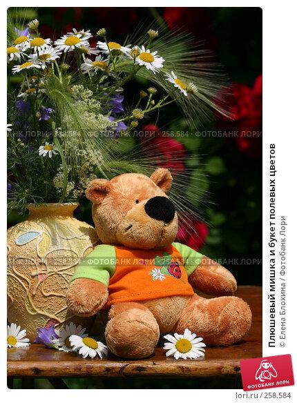 Плюшевый мишка и букет полевых цветов, фото № 258584, снято 24 июня 2007 г. (c) Елена Блохина / Фотобанк Лори