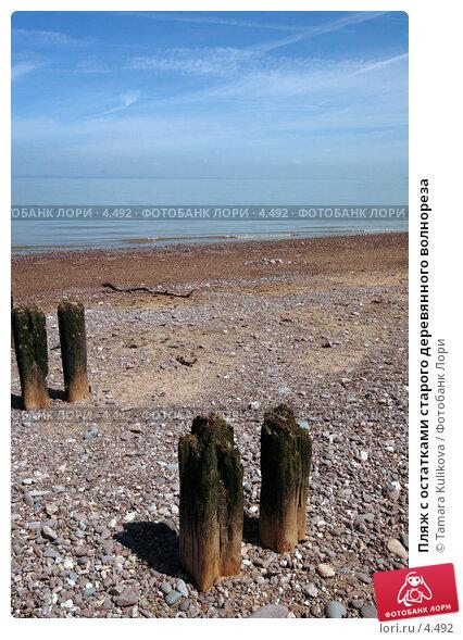 Купить «Пляж с остатками старого деревянного волнореза», фото № 4492, снято 5 июня 2006 г. (c) Tamara Kulikova / Фотобанк Лори