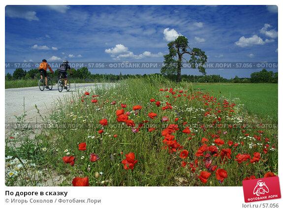 По дороге в сказку, фото № 57056, снято 28 мая 2017 г. (c) Игорь Соколов / Фотобанк Лори