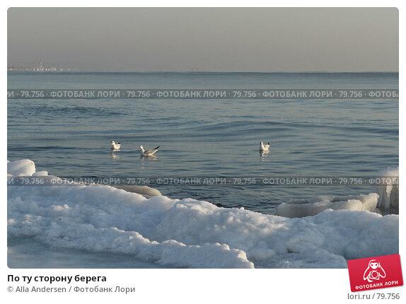 По ту сторону берега, фото № 79756, снято 27 января 2006 г. (c) Alla Andersen / Фотобанк Лори