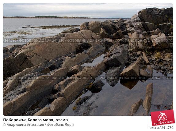 Побережье Белого моря, отлив, фото № 241780, снято 24 сентября 2007 г. (c) Андрюхина Анастасия / Фотобанк Лори