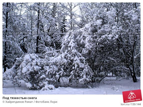 Под тяжестью снега, фото № 139144, снято 24 ноября 2006 г. (c) Хайрятдинов Ринат / Фотобанк Лори