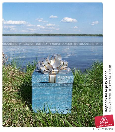Подарок на берегу озера, фото № 229368, снято 27 мая 2006 г. (c) Дима Рогожин / Фотобанк Лори