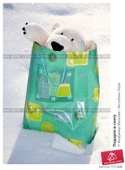Подарок в снегу, фото № 177640, снято 11 февраля 2007 г. (c) Владимир Мельник / Фотобанк Лори