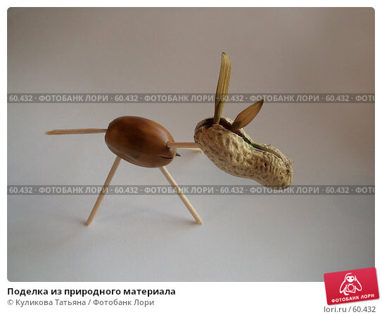 Поделка из природного материала, фото № 60432, снято 3 октября 2006 г. (c) Куликова Татьяна / Фотобанк Лори