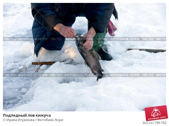 Подледный лов кижуча, фото № 190152, снято 2 декабря 2007 г. (c) Ирина Игумнова / Фотобанк Лори