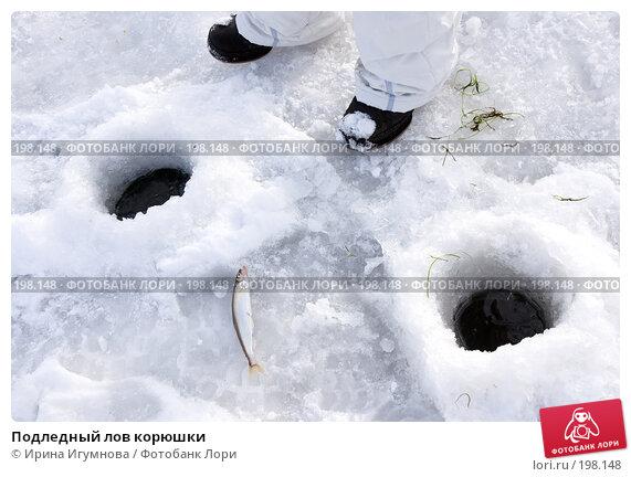 Подледный лов корюшки, фото № 198148, снято 2 января 2008 г. (c) Ирина Игумнова / Фотобанк Лори