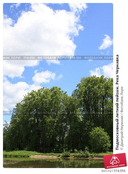 Подмосковный летний пейзаж. Река Чернавка, эксклюзивное фото № 314056, снято 2 июня 2008 г. (c) Дмитрий Неумоин / Фотобанк Лори