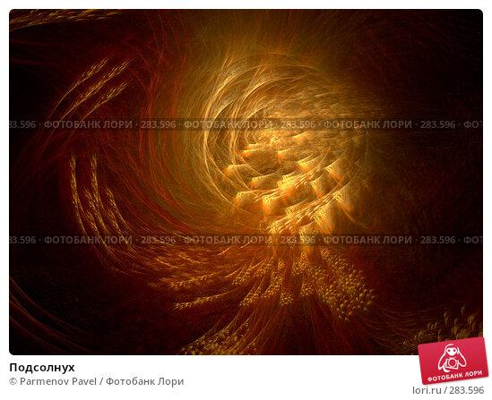 Подсолнух, иллюстрация № 283596 (c) Parmenov Pavel / Фотобанк Лори
