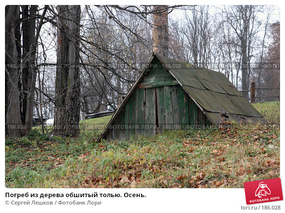 Погреб из дерева обшитый толью. Осень., фото № 186028, снято 4 ноября 2007 г. (c) Сергей Лешков / Фотобанк Лори