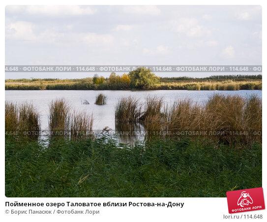 Пойменное озеро Таловатое вблизи Ростова-на-Дону, фото № 114648, снято 10 сентября 2006 г. (c) Борис Панасюк / Фотобанк Лори