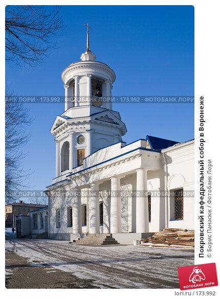 Покровский кафедральный собор в Воронеже, фото № 173992, снято 30 декабря 2007 г. (c) Борис Панасюк / Фотобанк Лори