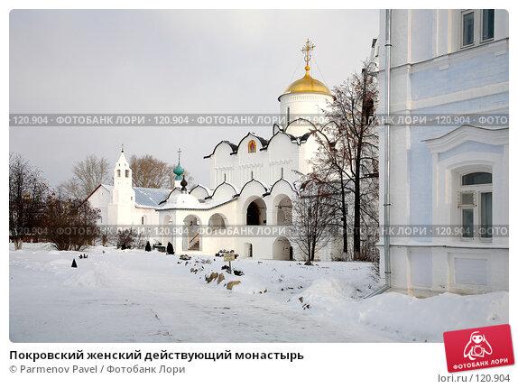 Покровский женский действующий монастырь, фото № 120904, снято 18 ноября 2007 г. (c) Parmenov Pavel / Фотобанк Лори