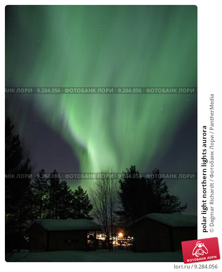 personal study northern lights by stephen grant essay Northern lights college is bc's energy college  study abroad students have fun basic research skills, essay structure, organization of ideas, diction.