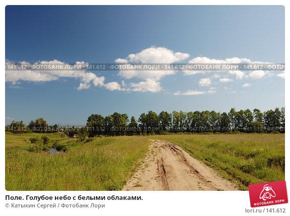 Поле. Голубое небо с белыми облаками., фото № 141612, снято 24 июня 2007 г. (c) Катыкин Сергей / Фотобанк Лори