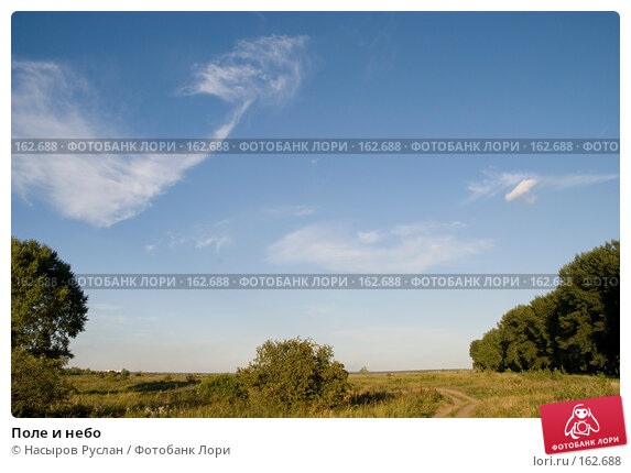Поле и небо, фото № 162688, снято 22 августа 2007 г. (c) Насыров Руслан / Фотобанк Лори